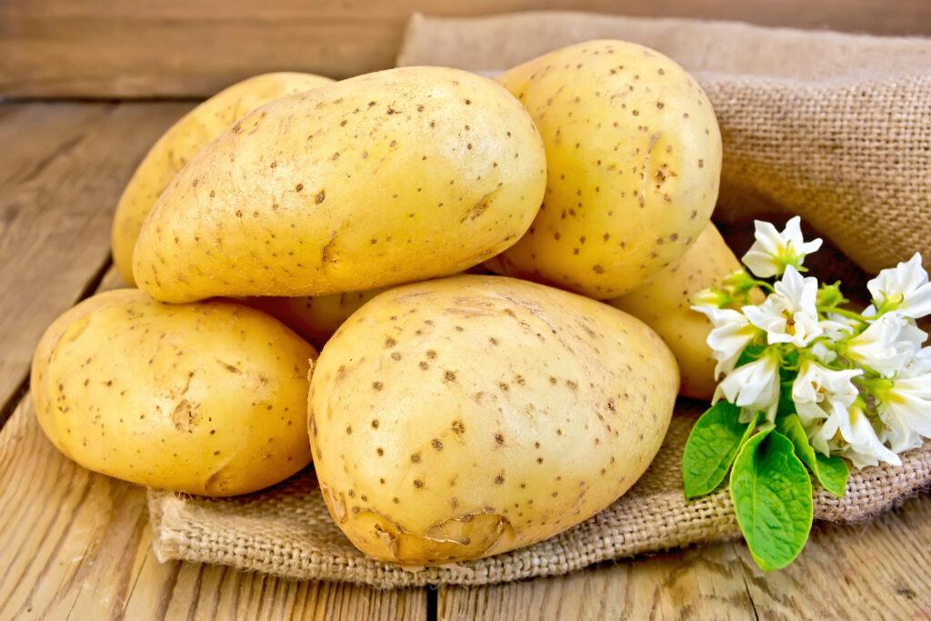 Krompir za hemoroide